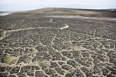 Полярная пустыня